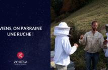 Blog Zenika - Parrainage Ruche